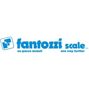 Fantozzi Scale